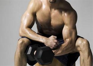 Healthy Body Building Plan